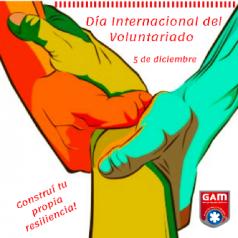 Día Internacional del Voluntariado.